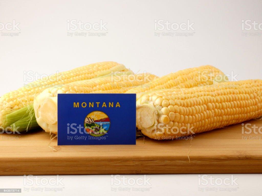 Bandeira de Montana em um painel de madeira com milho isolado em um fundo branco - foto de acervo