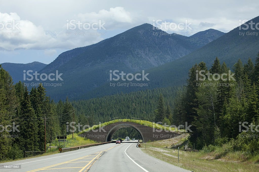 Montana Highway 93 Animal Bridge on Salish-Kootenai Reservation royalty-free stock photo