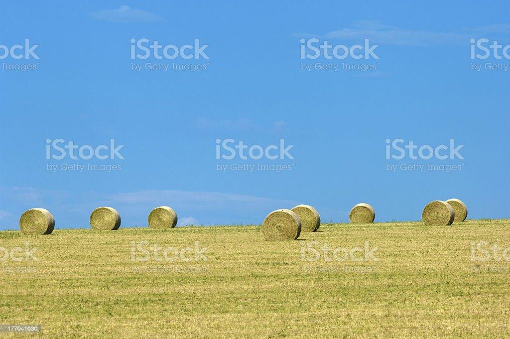 Montana landscape royalty-free stock photo
