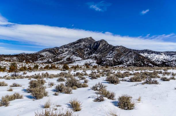 montana sky - pferdezeitschrift stock-fotos und bilder