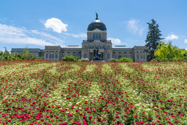 montana state capital building - montana western usa stock pictures, royalty-free photos & images