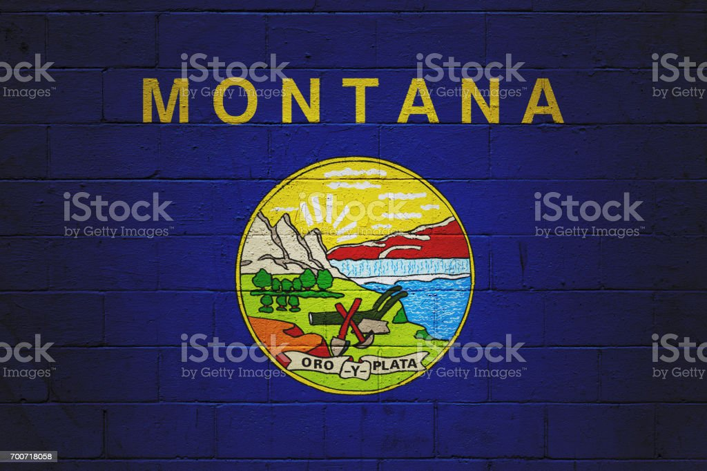 Bandeira do estado de Montana pintado em uma parede - foto de acervo