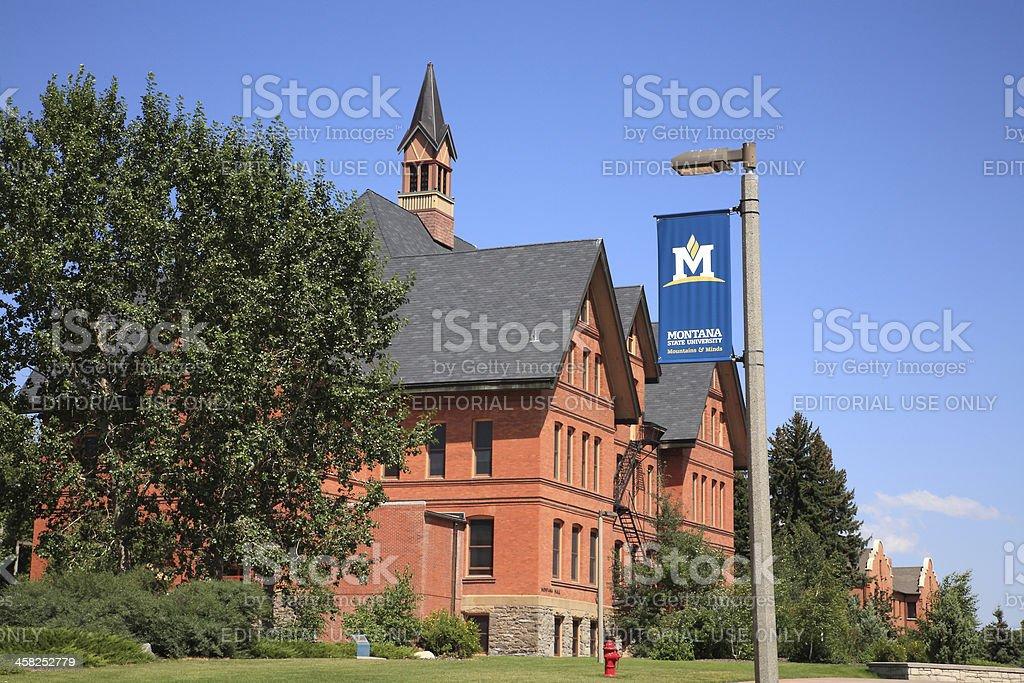 Montana State University Bozeman royalty-free stock photo