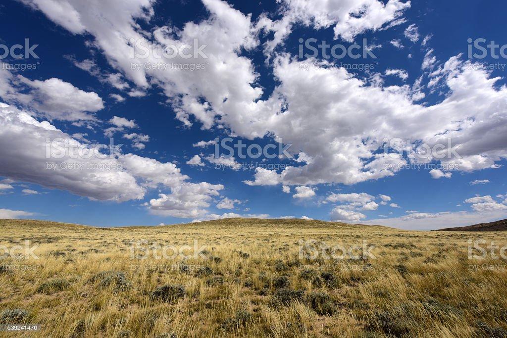 Montana, USA royalty-free stock photo