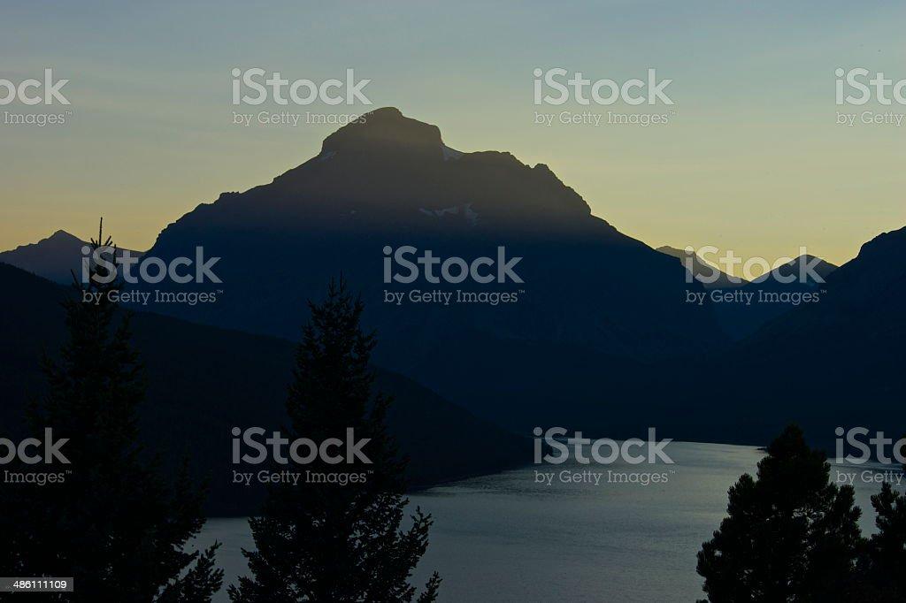 Montana's Rising Wolf stock photo