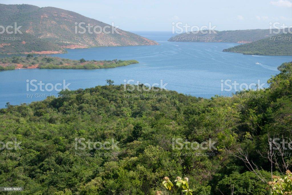 Montane forest vegetation in Mochima National Park Venezuela stock photo