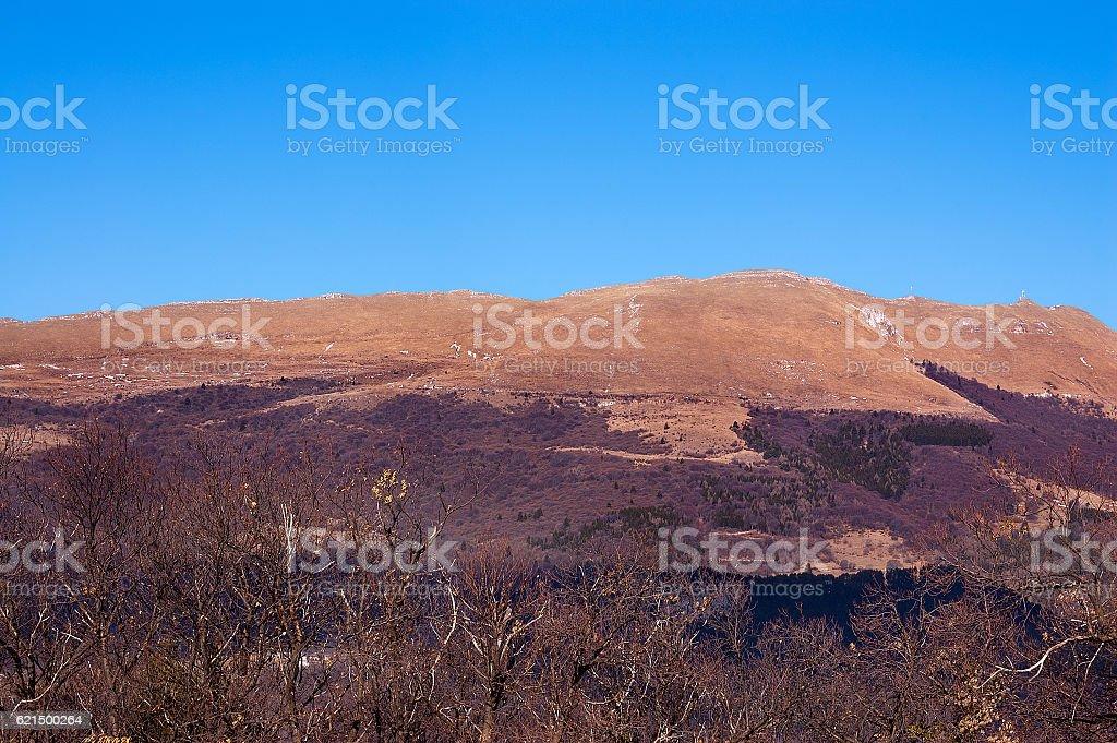 Monte Baldo in Autumn - Italian Alps Lizenzfreies stock-foto