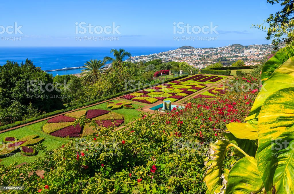 Monte tropical gardens in Funchal town, Madeira island, Portugal stock photo