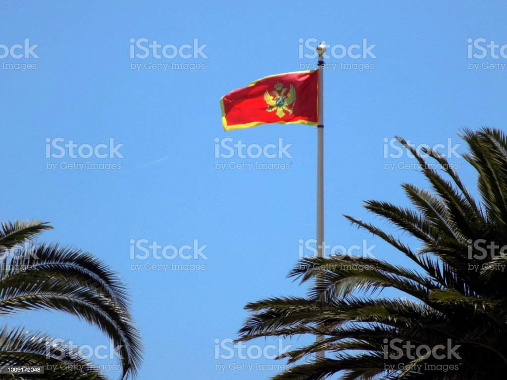 Montenegrino bandeira mais alto no céu, acima das palmeiras - foto de acervo