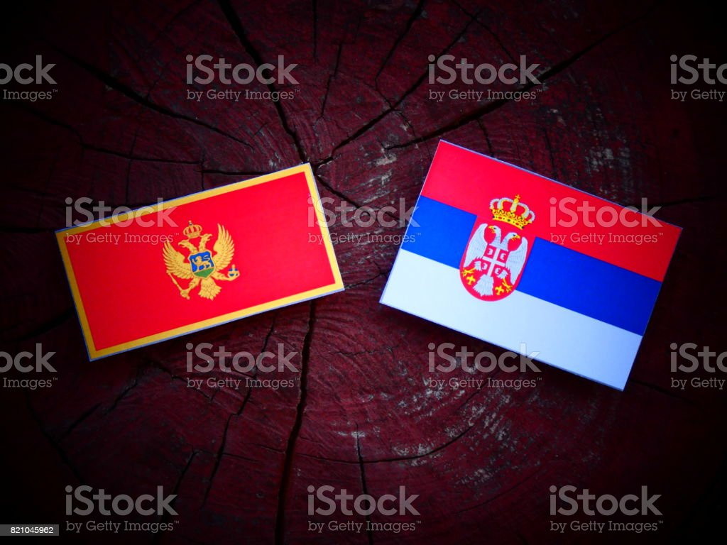 Montenegrin flag with Serbian flag on a tree stump isolated - fotografia de stock
