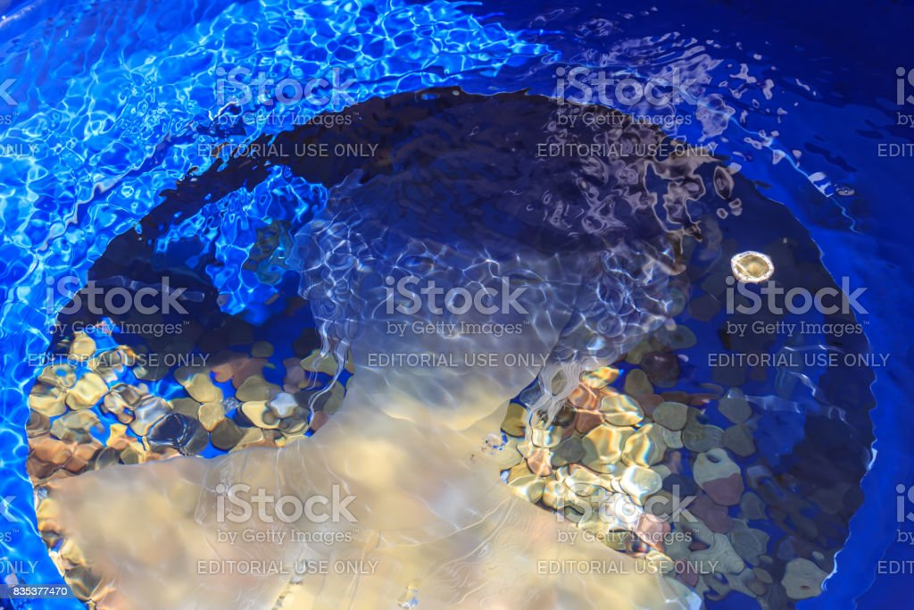 Montenegrin the well of desires on a square stock photo