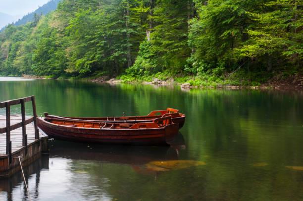 montenegro mountains - lakeshore stock photos and pictures