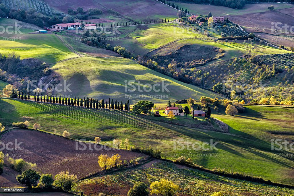 Montepulciano's hills stock photo