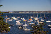 Boats in the Monterey Bay Marina.