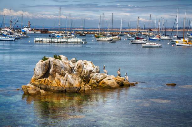 Monterey Bay – Foto