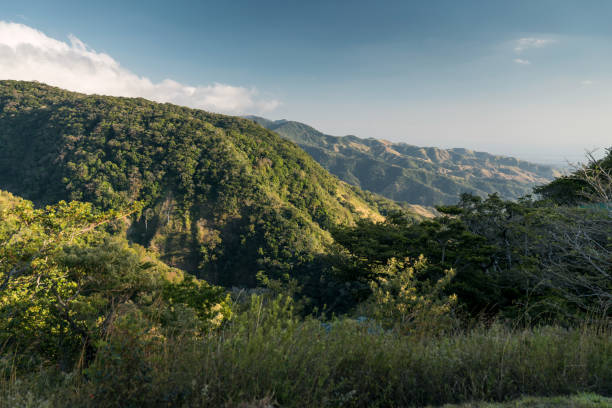 Monteverde stock photo