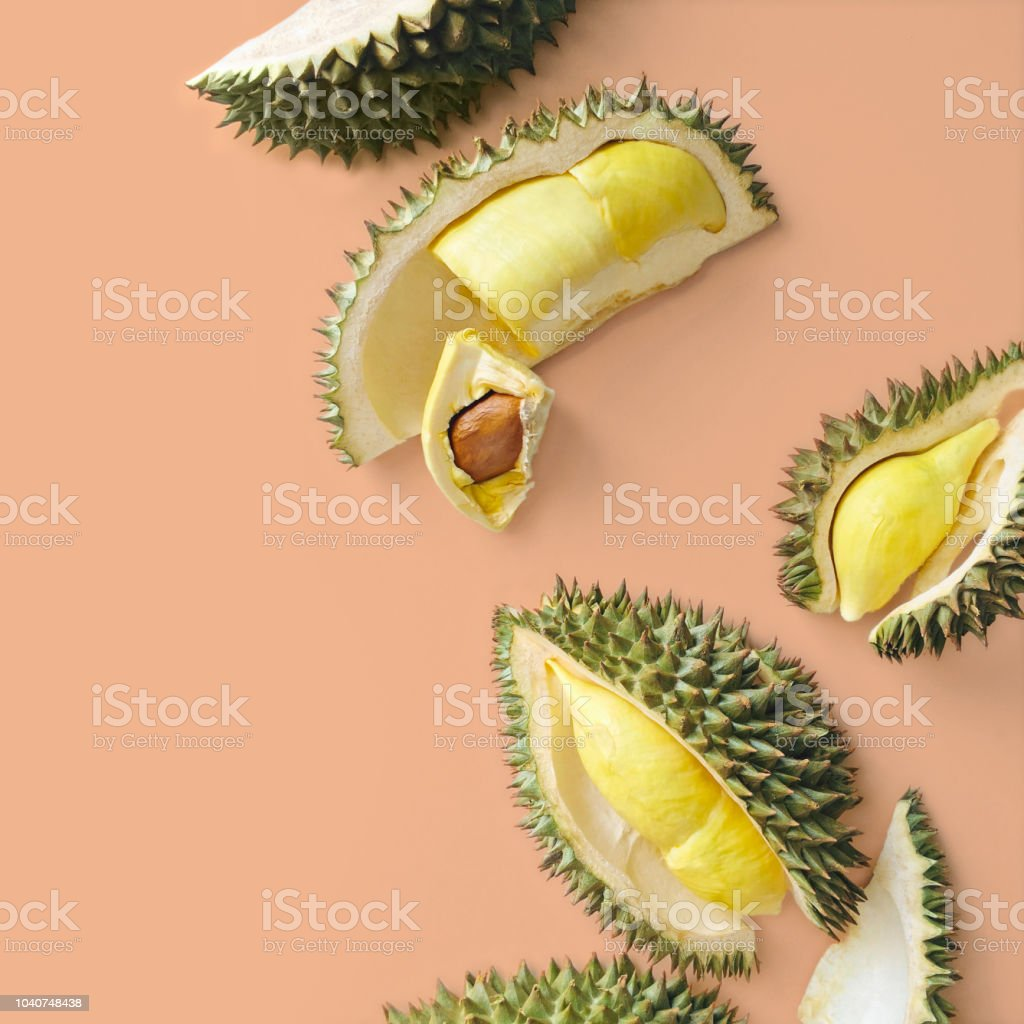 Monthong durian stock photo