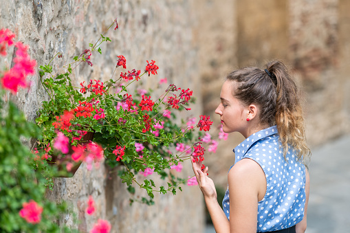 istock Monticchiello, Italy town or village city in Tuscany closeup of woman young girl smelling touching red flower pots decorations on summer day stone wall architecture 1138186509