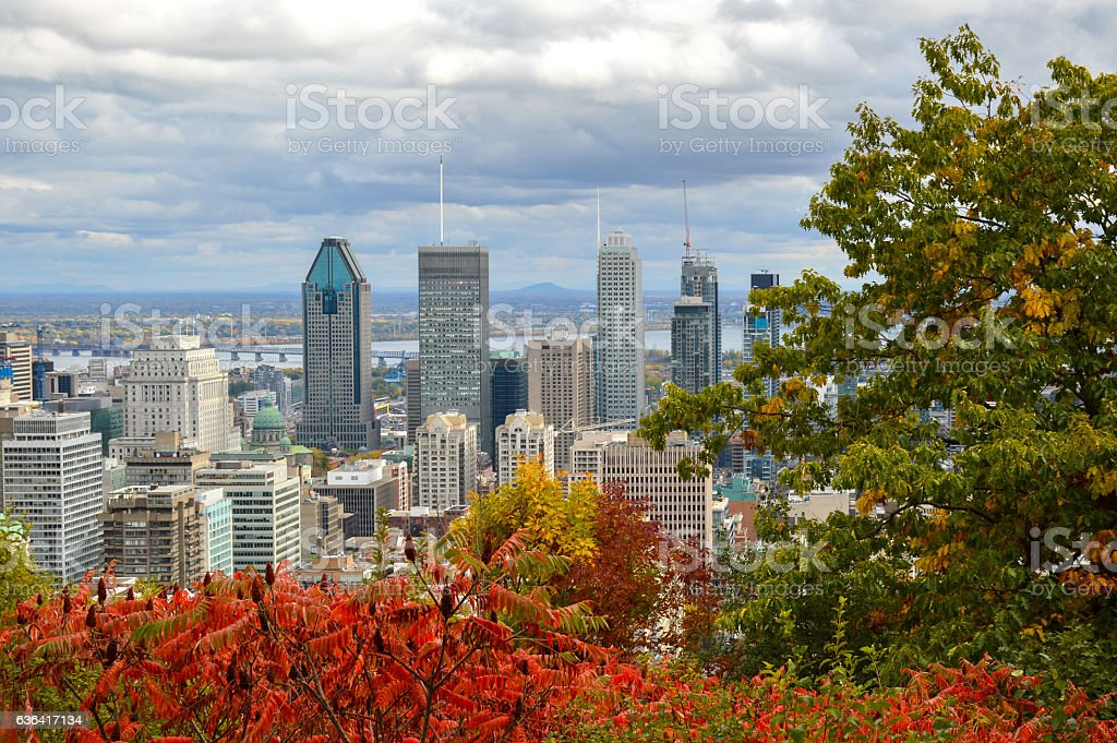 Montreal Skyline in fall stock photo