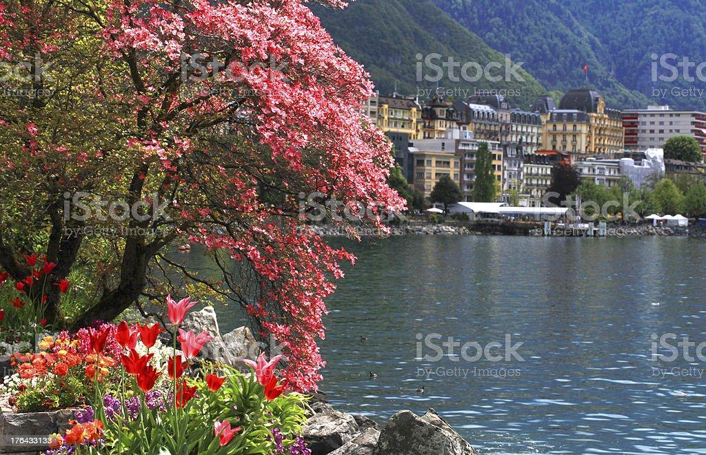 Montreux and  Lake Geneva, Switzerland. royalty-free stock photo