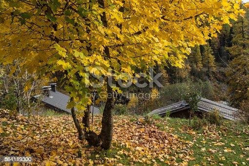 Montrocchamonixhaute Savoiefrance Stock Photo & More Pictures of Autumn