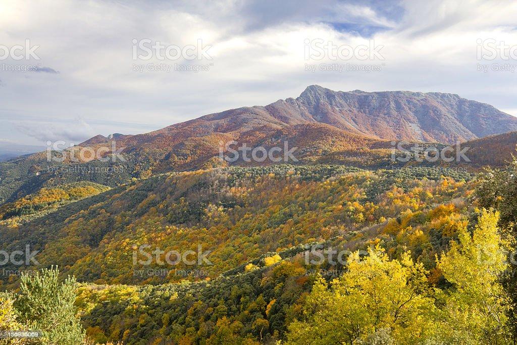 Montseny Natural Park stock photo