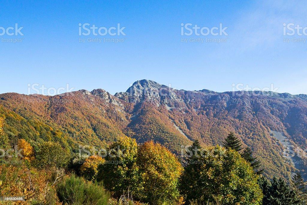 Montseny parque Natural - foto de stock
