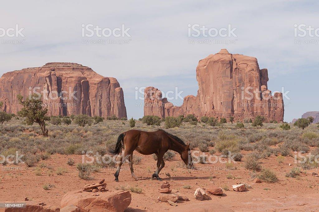 Monument Valley Navajo Tribal Park royalty-free stock photo