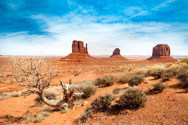 monument valley - united states of america - west direction stock pictures, royalty-free photos & images
