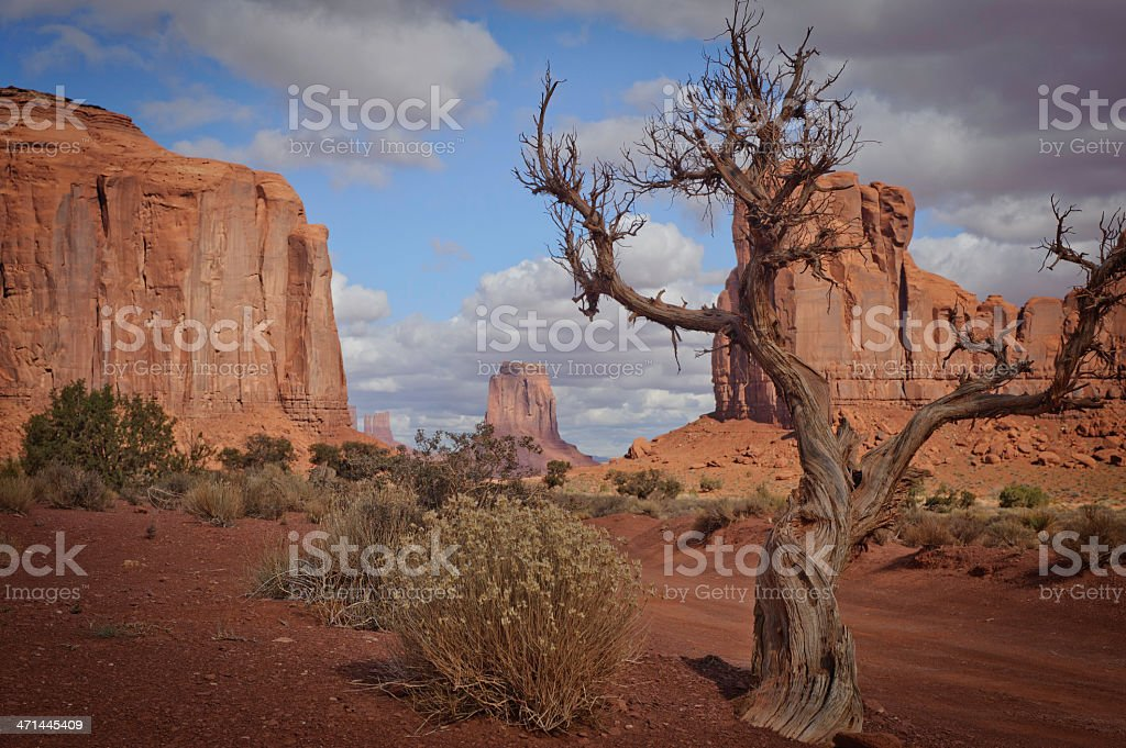 Monument Valley with Driftwood Tree and Bush stock photo