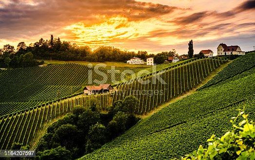 Moody landscape of south Styrian grape hills. Austrian vineyards in sunset light.