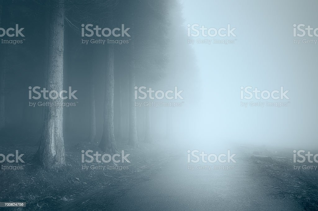 moody landscape with a foggy road stock photo