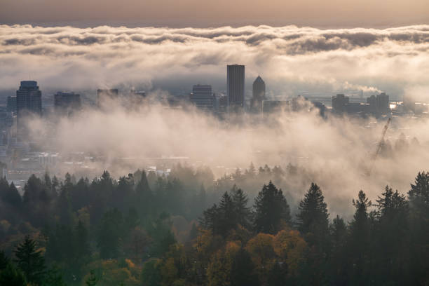 Moody misty Portland downtown with rolling fog and autumn foliage stock photo