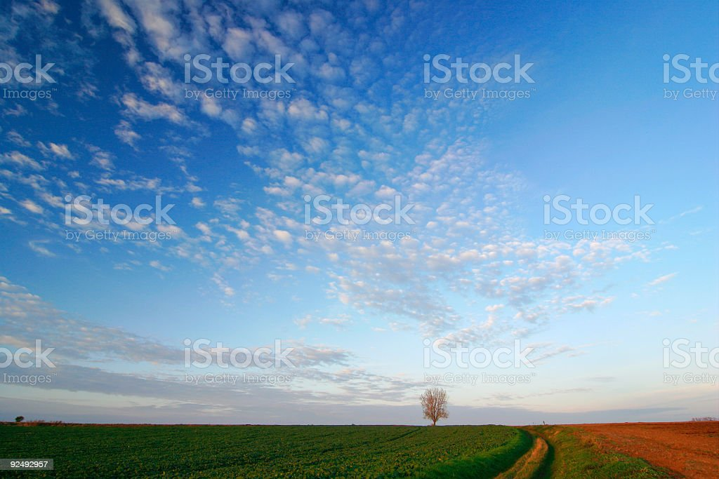 Moody Sky II royalty-free stock photo