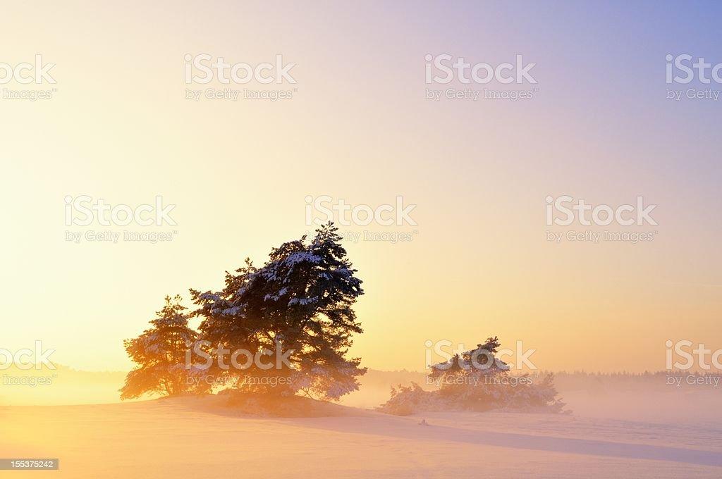 Moody Winter Landscape royalty-free stock photo