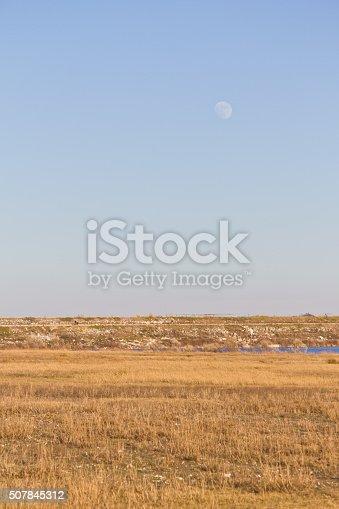 istock Moon at Brushy Creek Regional Trail 507845312