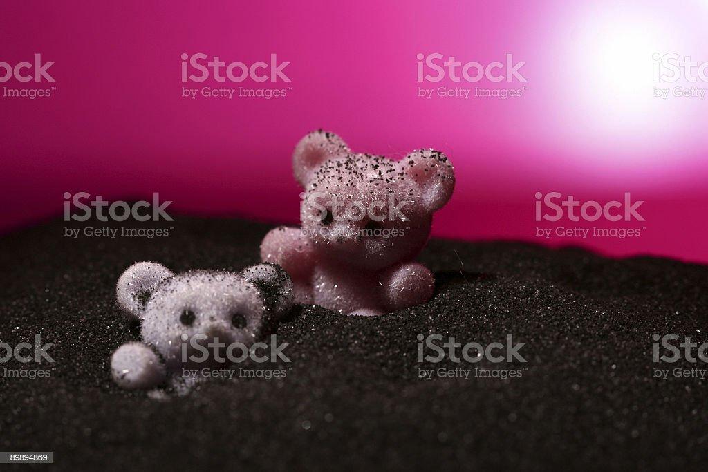 Moon Bears royalty-free stock photo