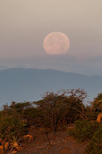 Moon down behind de the dunes On Bani