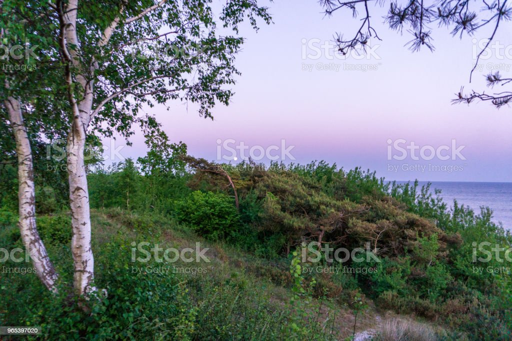 Moon is rising over idyllic Bornholm, Denmark on a day in summer royalty-free stock photo
