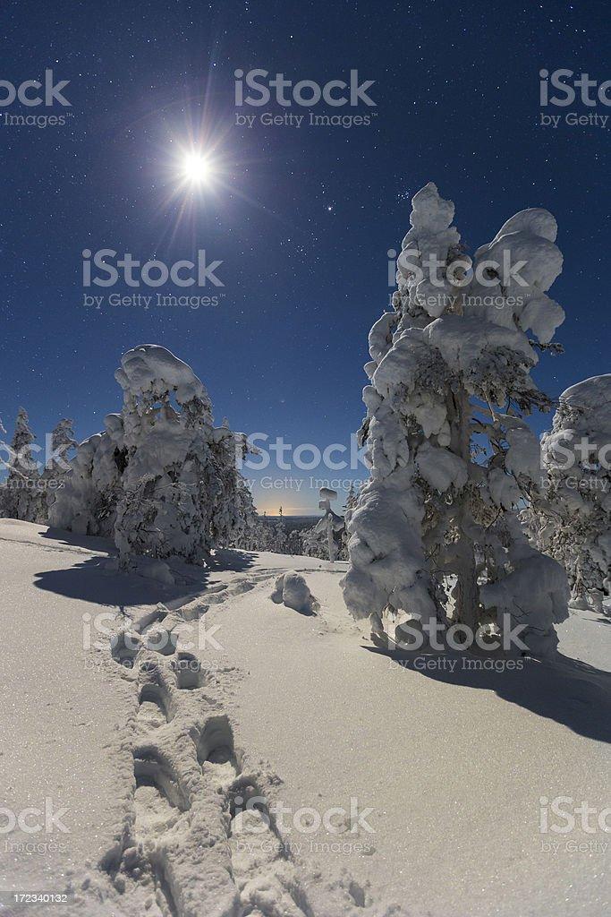 Moon light royalty-free stock photo