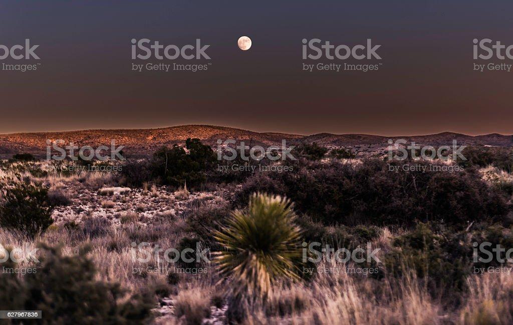 'Moon of New Mexico's Desert' stock photo