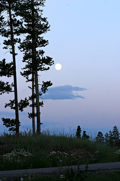 Moon on the mountain  bunnylady stock pictures, royalty-free photos & images