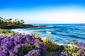 This view is in La Jolla, CA of the Pacific Ocean