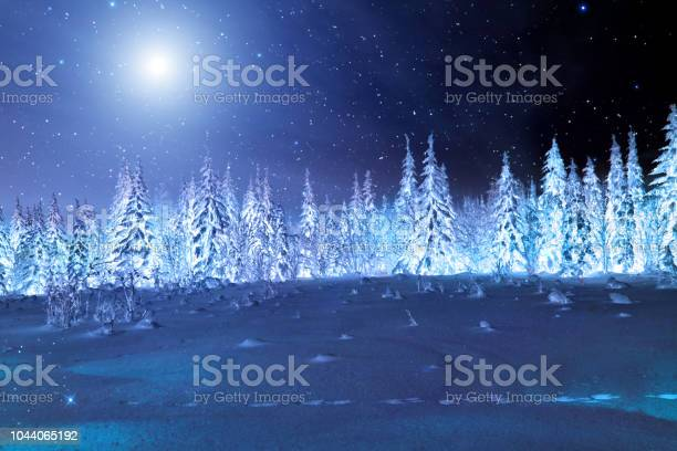 Photo of Moon over winter forest. Winter night landscape. Spruce forest in winter