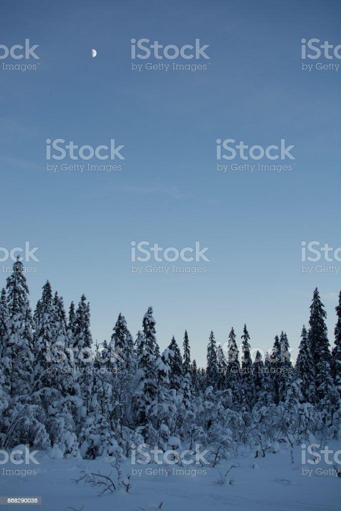 Moon over winter landscape stock photo