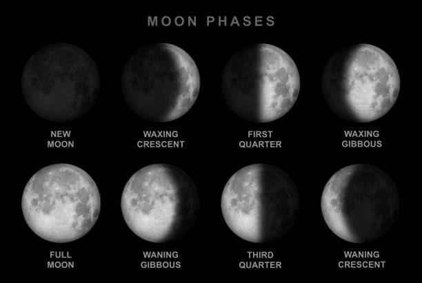 moon phases - inglese - luna gibbosa foto e immagini stock