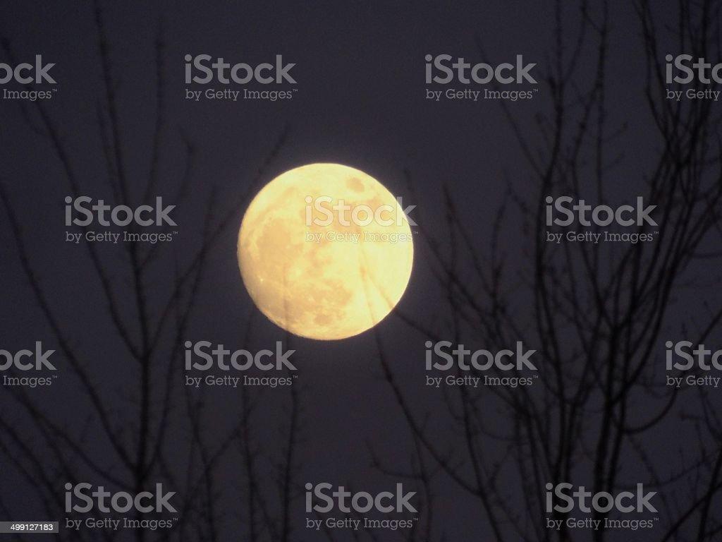 HONEY moon stock photo