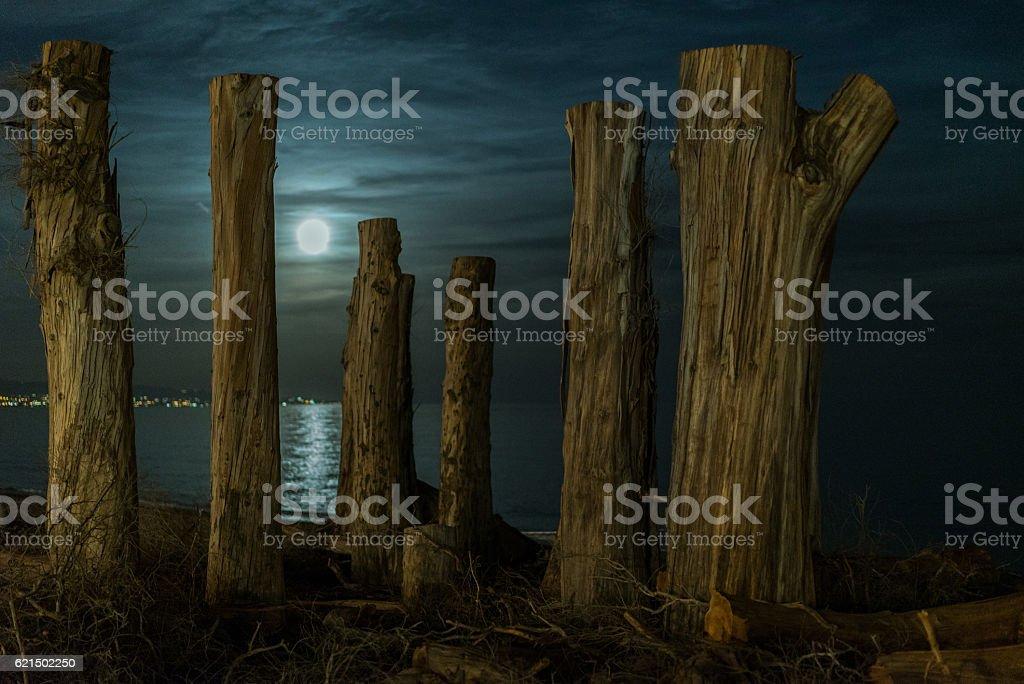 Moon  photo libre de droits