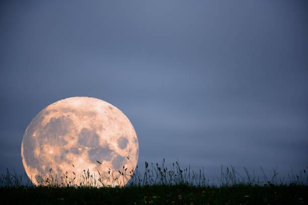 impostazione lunare contro banca d'erba - luna gibbosa foto e immagini stock