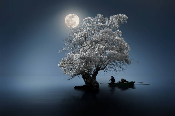 Moon shines beautifully on the dream country lighting up the fisherman stock photo